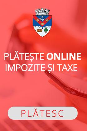 Impozite-Taxe-banner2